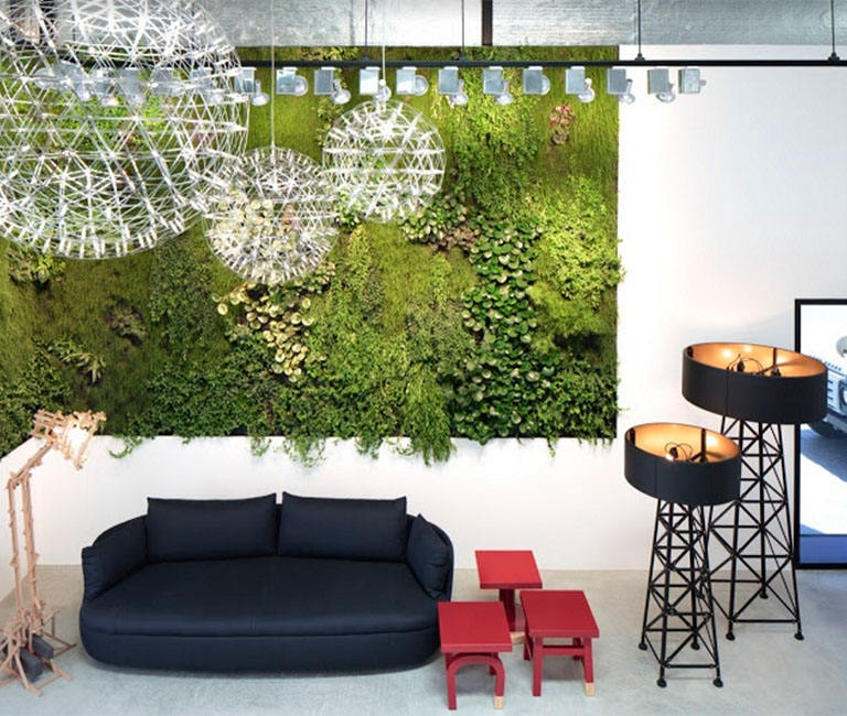 Green Wall in Creative Studio