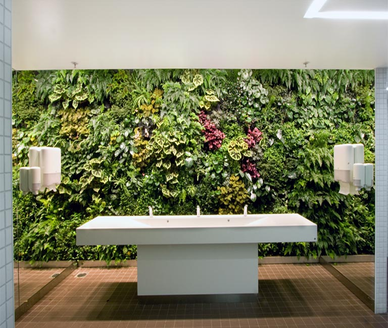 Living Wall in Bathroom