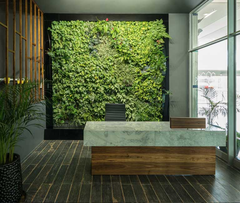 Organic Space with Green Wall