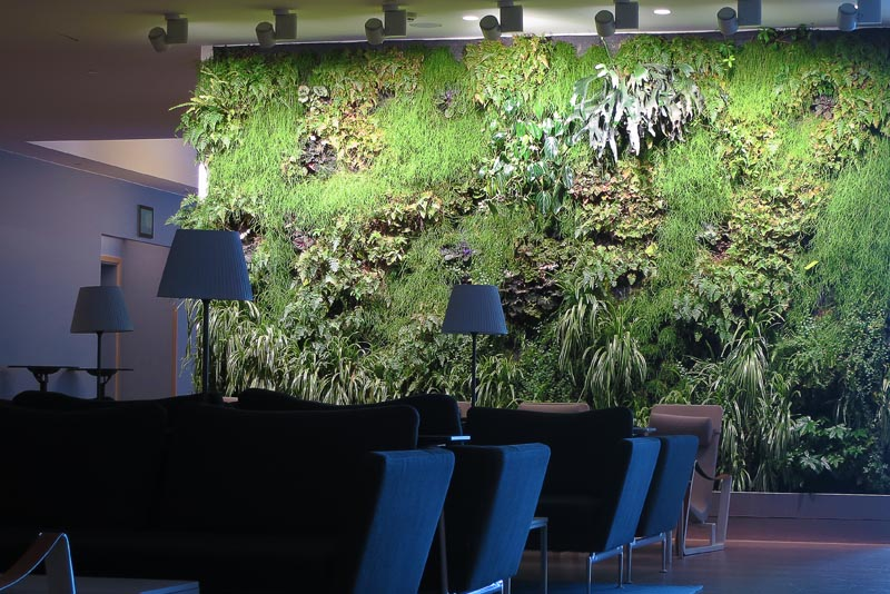 Quality Hotel Green Wall System