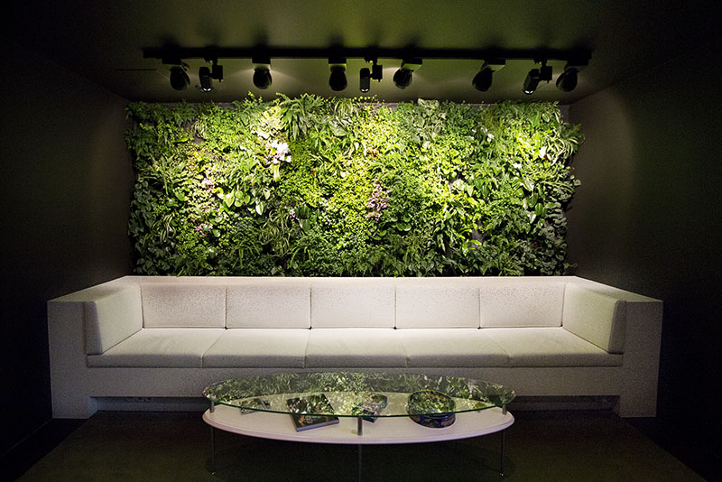 Thelma Louise Green Wall